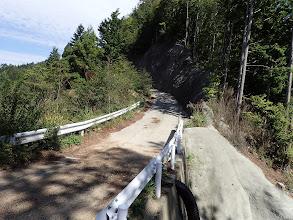 大津峠へ林道を進む