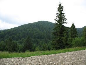 Photo: 04.Gorc Kamieniecki (1160 m).