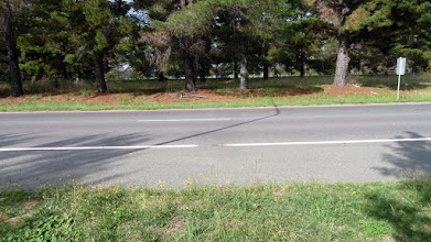 Photo: Looking across the Barton Hwy to where one could come from Palmerville (Gregs notes for future walk)