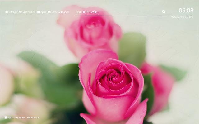 Pink Roses Tapetai HD Naujas skirtukas tema