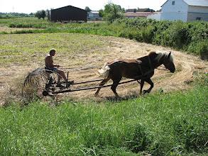 Photo: ursprüngliche Landwirtschaft?!