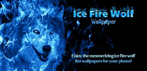 Latar Wallpaper Serigala Biru Aplikasi Di Google Play