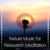 Nature Music for Relaxation Meditation, Reiki, Sounds of Nature, Tranquility Spa Music