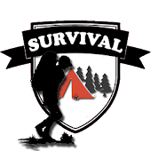 Survival mission