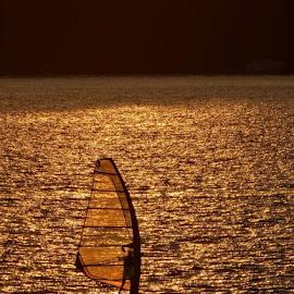 Wind by Ewa Fabisiak - Sports & Fitness Surfing