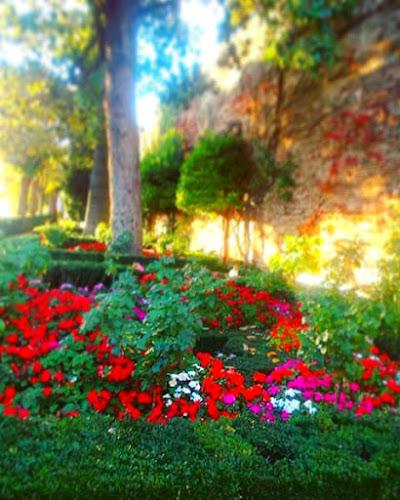 Springtime colours di dileflo