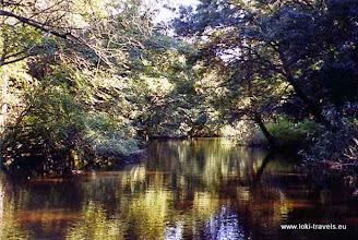 Photo: Ropotamo rivier | Ropotamo river.  www.loki-travels.eu