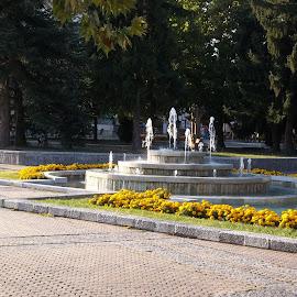 Фонтан by Georgi Kolev - City,  Street & Park  Fountains ( слънце., плочки., цветя., ден., дървета., фонтан. )