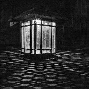 Night Light by Teresa Solesbee - Black & White Objects & Still Life ( light, lateen, night, black and white )