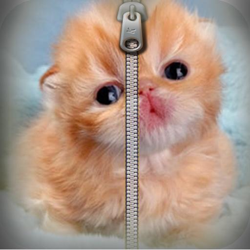 Cute Puppy Screen Lock 娛樂 App LOGO-APP開箱王