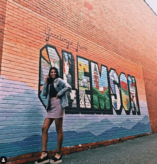 Instagrammable Clemson - Tiger Wall