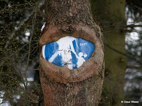"""Photo: """"Baum frißt Schild"""" in Hilchenbach-Allenbach."""