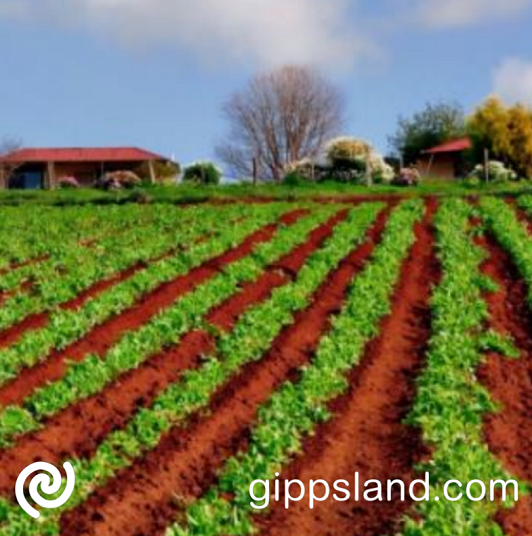 Applications for the 2021-22 round of Agricultural and Pastoral Society grants are now open, in recognition of the adverse financial impact of COVID-19, the 2021–22 grant funding guidelines continue to allow for up to 90 per cent of the total cost of the project to be funded through the program