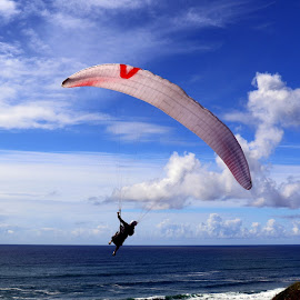 Adventure in the sky by Gil Reis - Sports & Fitness Other Sports ( sky, places, nature, portugal, people, colors )
