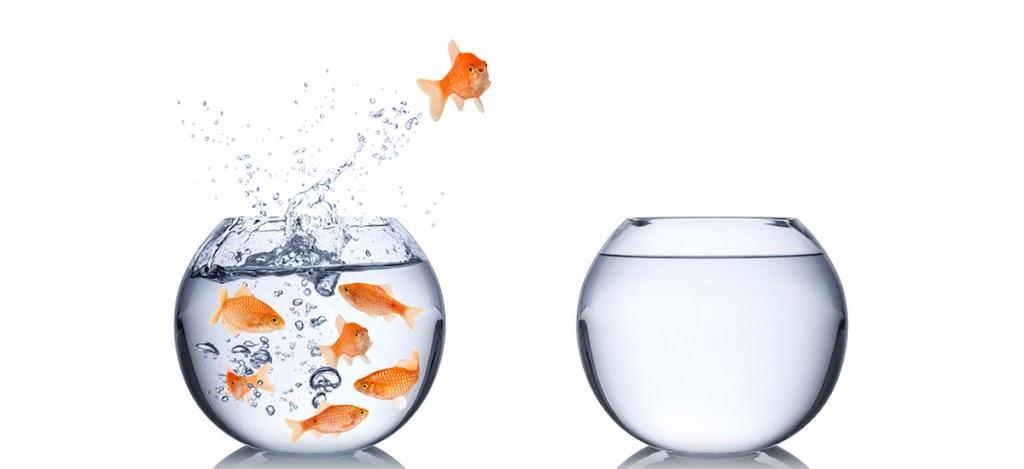 Fisch springt in leeres Glas