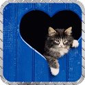 Cute Cats Pack 2 Wallpaper icon