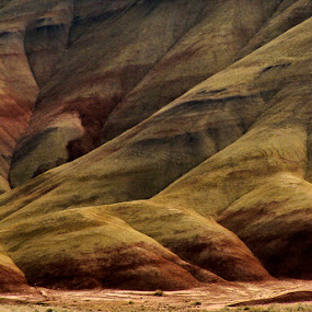 Washington's Painted Hills by Marie Browning - Landscapes Mountains & Hills ( hills, detail, red, multi-color, yellow,  )