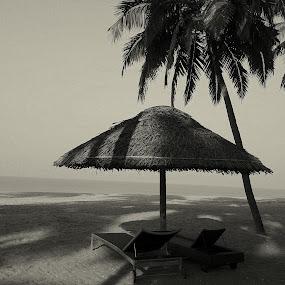 Bay Watch by Abhishek Majumdar - Landscapes Beaches