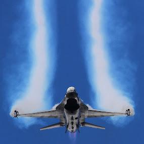 Falcon by Marcin Chmielecki - Transportation Airplanes