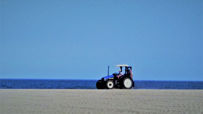 sulla spiaggia    di AlexSandra
