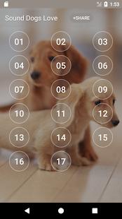Sound Dogs Love - náhled