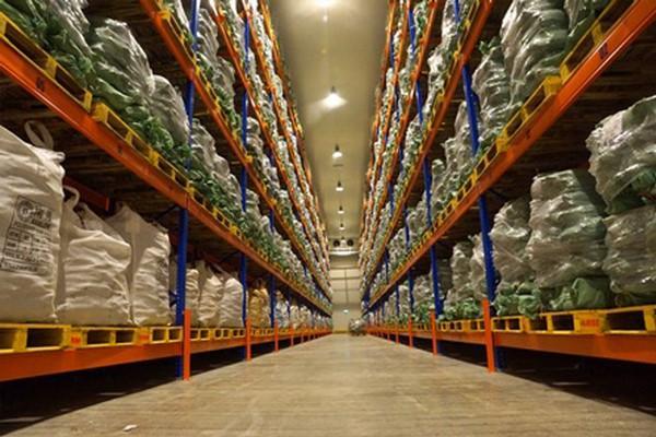 Đơn vị thi công lắp đặt kho lạnh bảo quản hạt giống uy tín