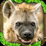 com.glutenfreegames.hyenasimulator