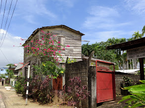 Photo: Paramaribo - Costerstraat