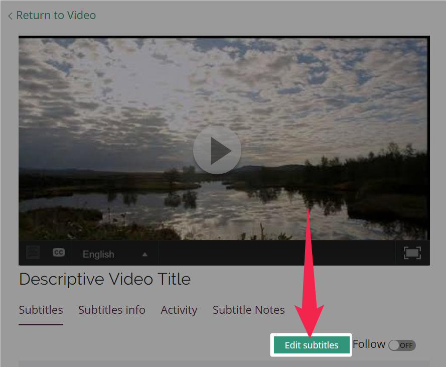 Pink arrow pointing to highlighted Edit subtitles button on the subtitle details page for managers and above