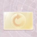 プリンセス級更新カード