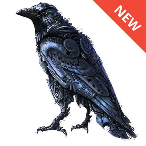 App Insights Crow Wallpaper
