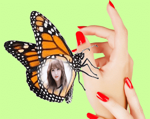 Butterfly Photo Frame Effect