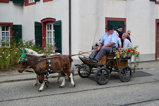 Photo: Mini-Gespann in voller Fahrt