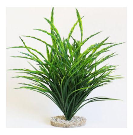 Mountain Grass 48cm