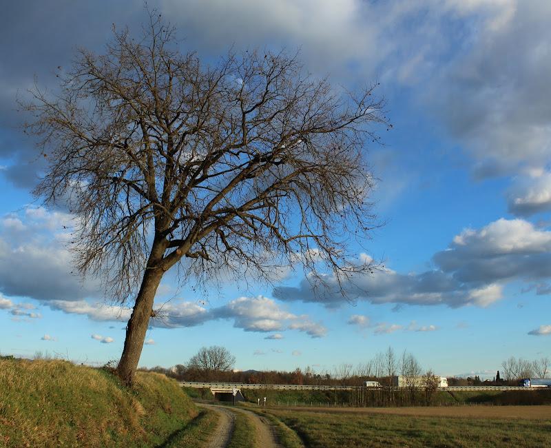 Paesaggio di Febbraio di nico_lrn