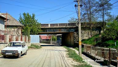 Photo: 2009.04.26