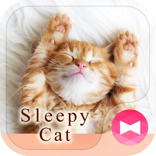 Lovely Wallpaper Sleepy Cat Theme Icon