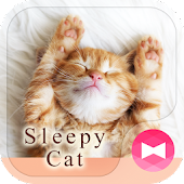 Lovely Wallpaper Sleepy Cat Theme