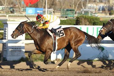 Aguila Uno (Don Cavallo) se quedó con la victoria en Handicap (1200m-Arena-CHS).