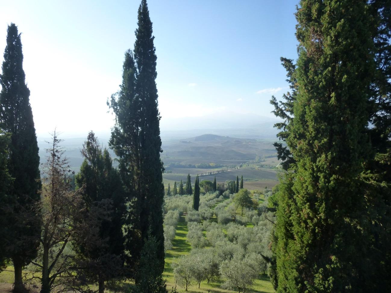 C:\Users\Gonzalo\Desktop\Documentos\Fotografías\La Toscana\103_PANA\103_PANA\P1030470.JPG