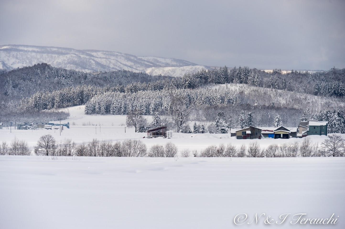 ヨーロッパのような雪景色