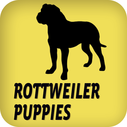 罗威小狗 娛樂 App LOGO-硬是要APP