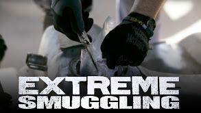 Extreme Smuggling thumbnail