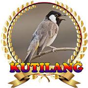 Suara Burung Kutilang Juara mp3