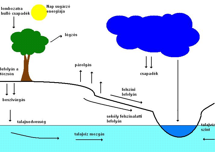 1.1. ábra. A hidrológiai ciklus egyszerűsített vázlata (Padisák, 2005 nyomán)