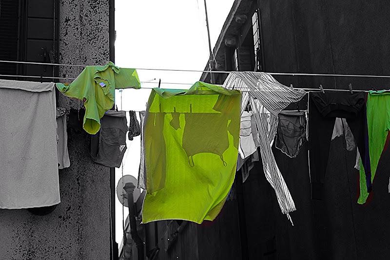 Verdi panni al sole! di Michela.S69