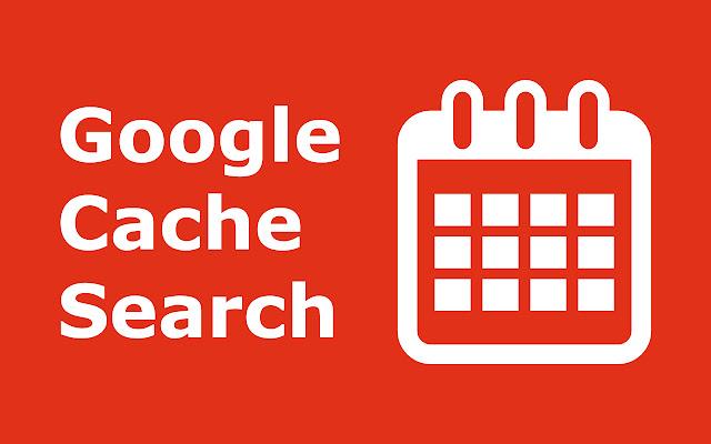 Google Cache Search