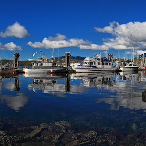 Safe Harbor by Pam Mullins - Transportation Boats ( water, calm, reflection, harbor, cnanada, blue, boats, tranquility, pam mullins, marina, bc, panoramic, relax, tranquil, relaxing )