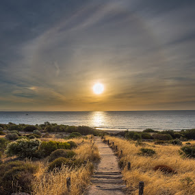 Hallett Cove Beach by Mark Anolak - Landscapes Sunsets & Sunrises ( sunset,  )