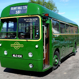Regal Green by DJ Cockburn - Transportation Automobiles ( north weald, bus, nle636, vintage, vehicle, public transport, london transport, rf636, north weald station, england, heritage railway, london, vintage vehicle rally, essex, associated equipment company, epping ongar railway, historical, transport for london, aec regal iv, antique )